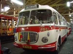 Prague Bus