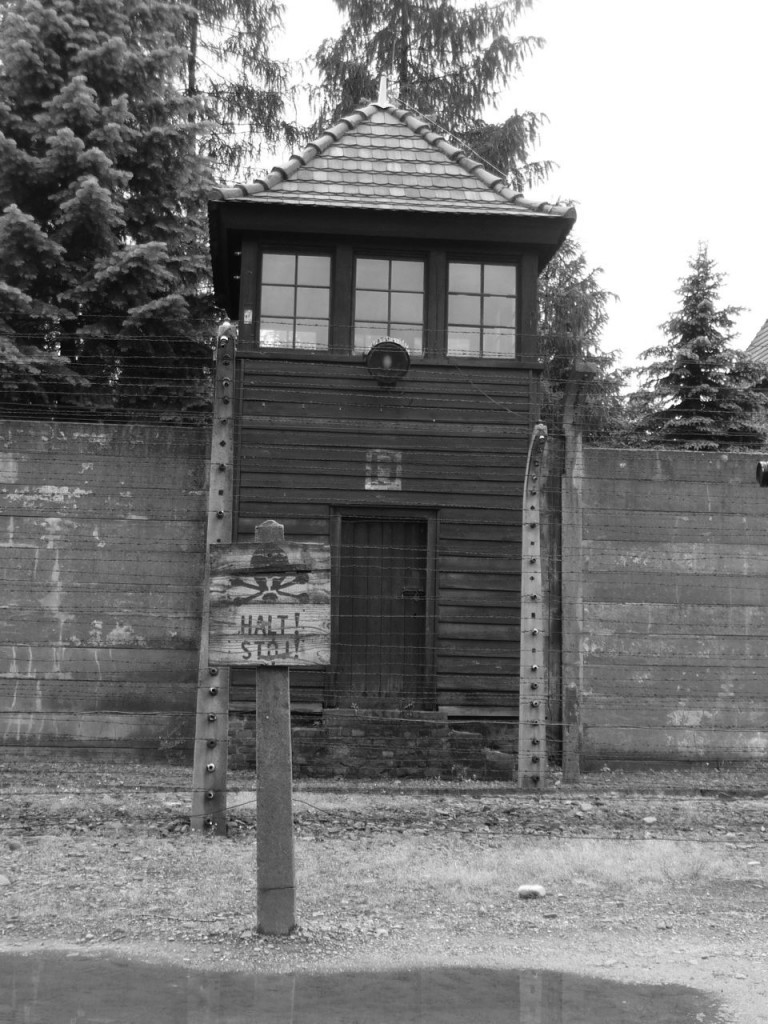 Auschwitz Tower