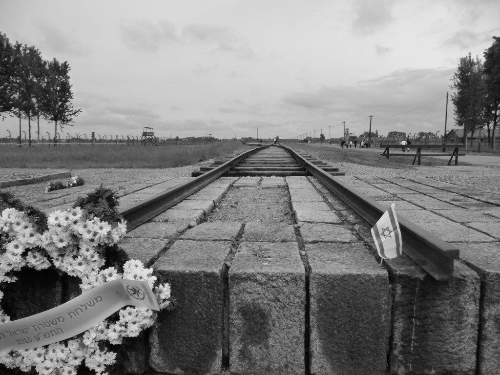 Birkenau End Of The Line