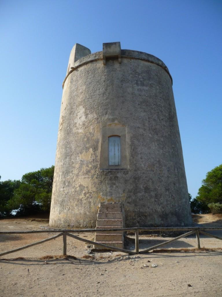 Torredel Tajo San Ambrosio