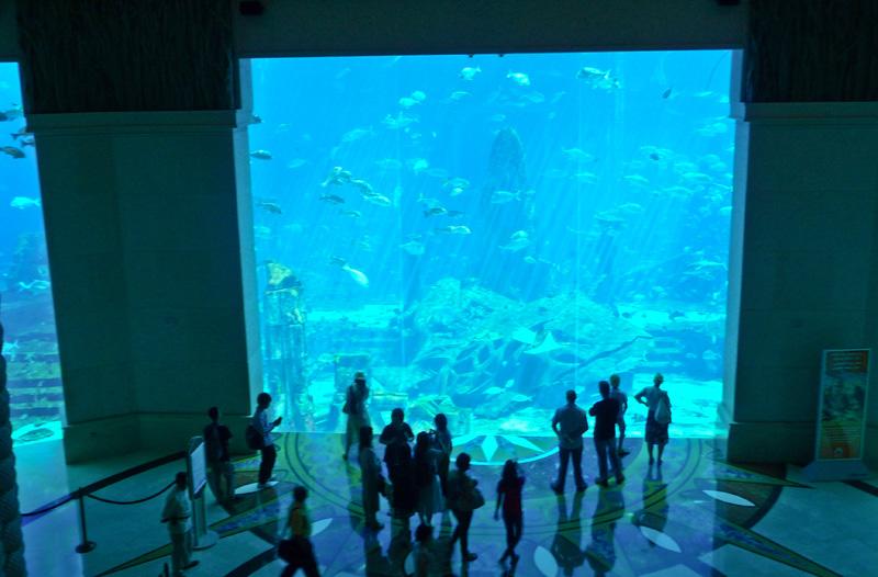 Dubai Luxury Atlantis Aquarium