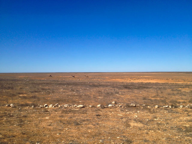 The Indian Pacific Nullarbor Plain