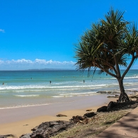 Beach Life - Sunshine Coast
